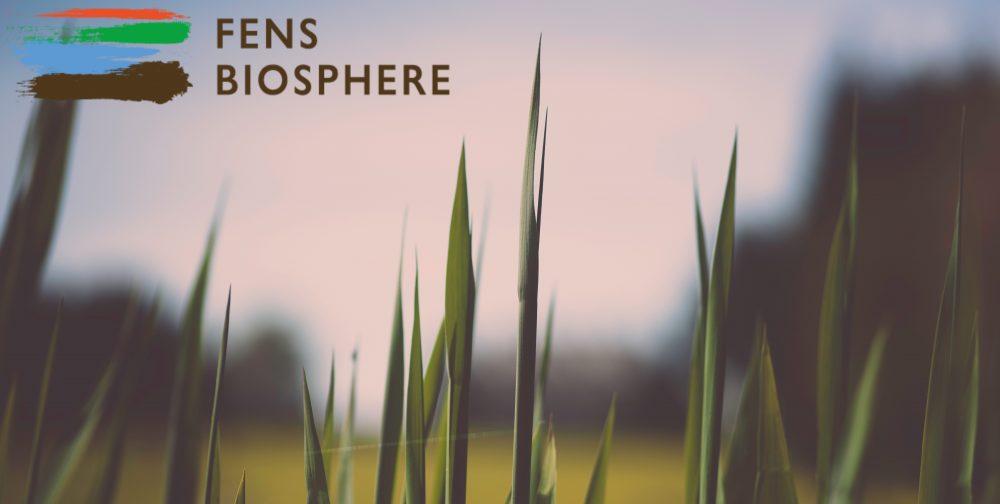 Fens Biosphere